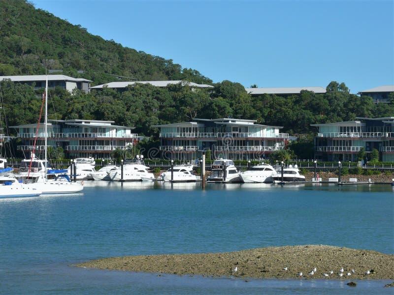 Seascape med att förtöja seglar i marina, marina med hus, i de suddiga bakgrundsbergen arkivfoto