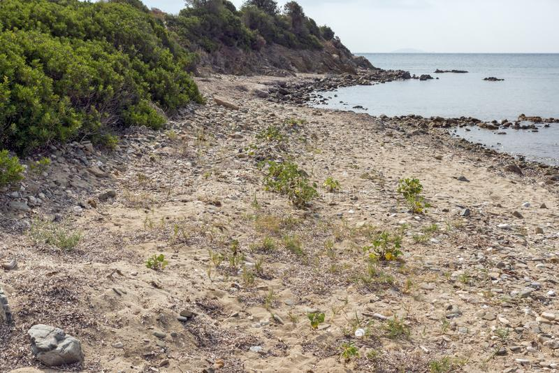 Seascape Monopetro plaża przy Sithonia półwysepem, Chalkidiki, Środkowy Macedonia, Grecja fotografia stock
