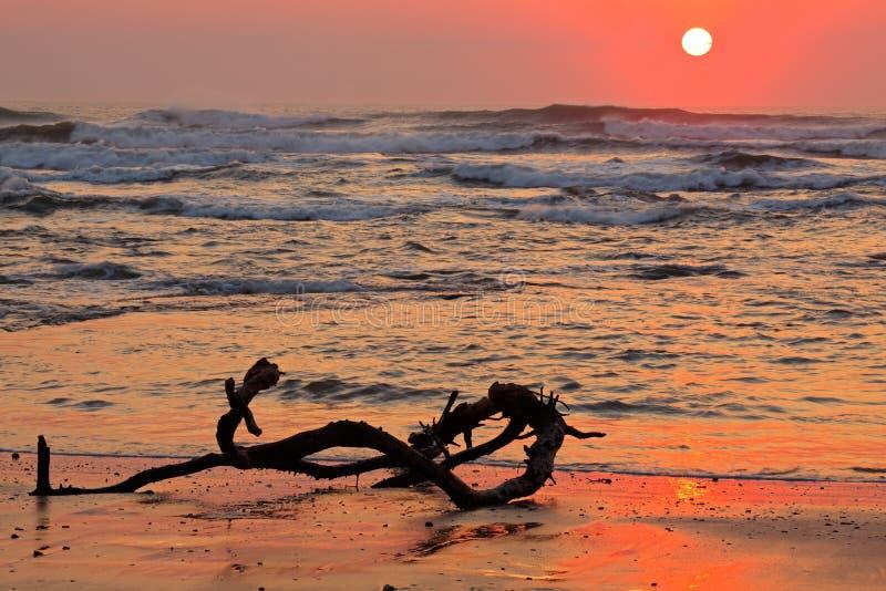 Seascape no nascer do sol fotografia de stock