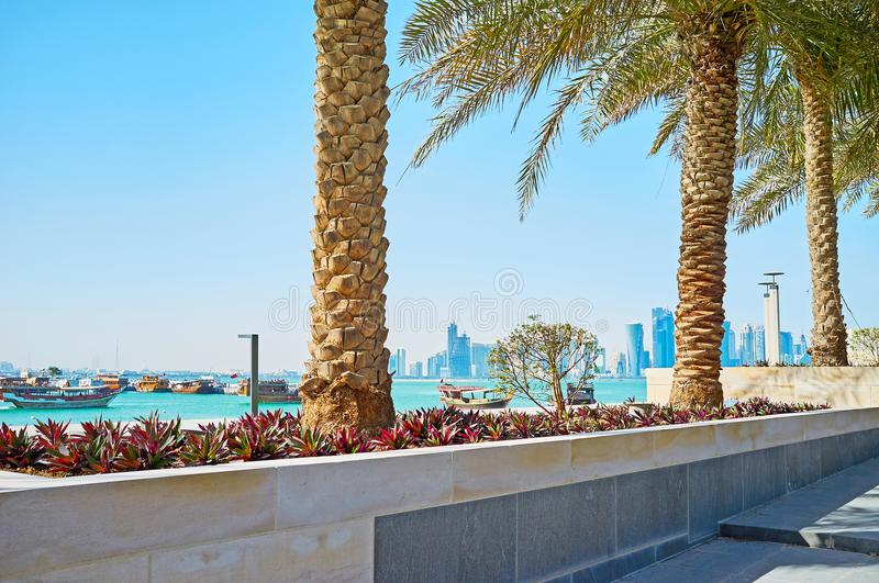 The seascape with palms, Doha, Qatar. Relax on shaddy alley of Museum park with a view on the floating dhow boats and modern glass skyscrapers of Al Dafna stock photo