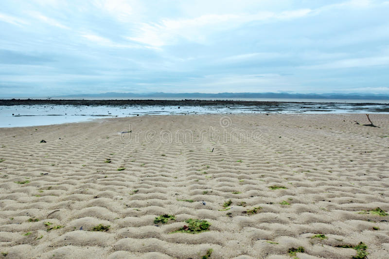 Seascape with sand ripples