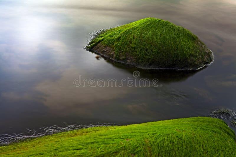 Download Seascape Seaweed On Rocks Like Paradise Island Stock Photo - Image: 20491490
