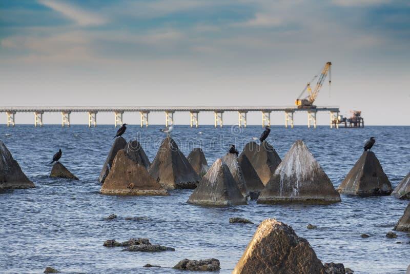Seascape. Stones and concrete pyramids. With cormorants and seagulls in the sea against the background of the Shabla Bridge. Northern Black Sea Coast, Bulgaria stock photos