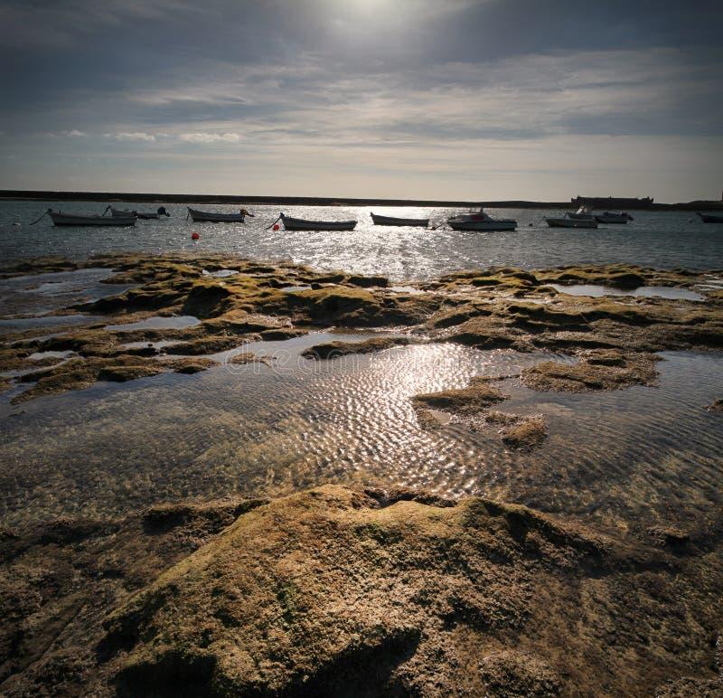 Download Seascape stock photo. Image of coastline, beach, sunbeams - 39503460