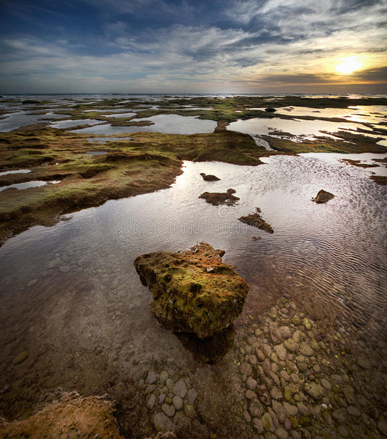 Download Seascape stock photo. Image of background, shore, beautiful - 39503466