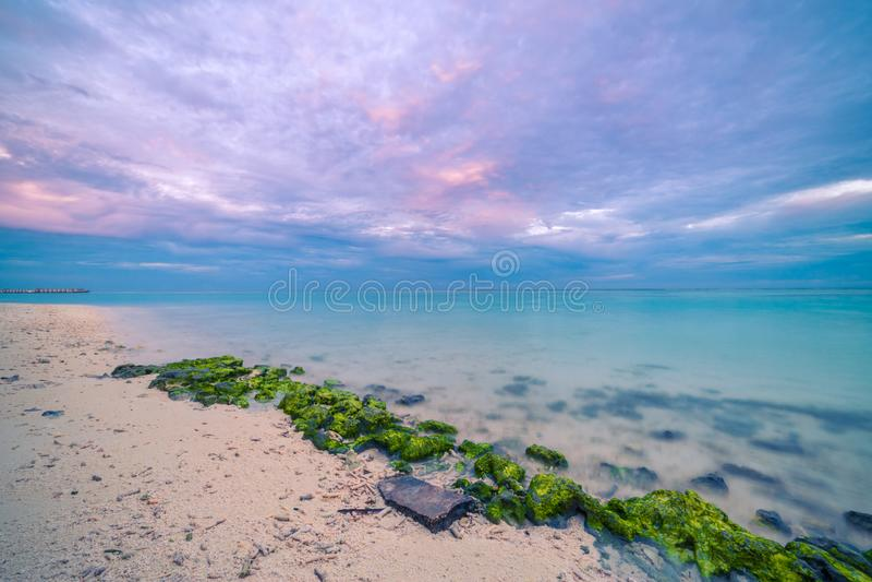 Beautiful sunrise sunset seascape, moss on rocks, colorful sky with sea horizon stock photo