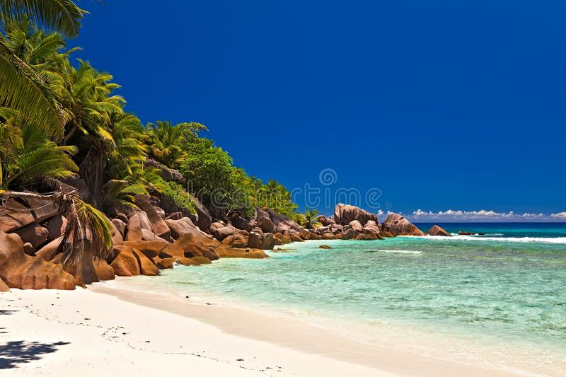 Download Seascape view stock photo. Image of desert, paradise - 23386076