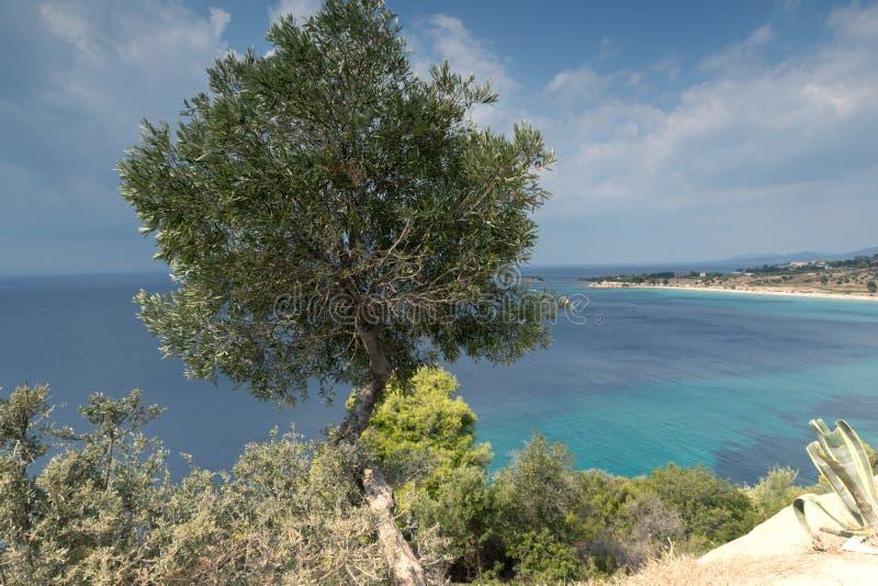 Seascape z ażio Ioannis plażą przy Sithonia półwysepem, Chalkidiki, Środkowy Macedonia, Grecja zdjęcia royalty free