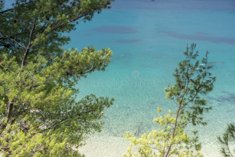 Seascape z Elia plażą przy Sithonia półwysepem, Chalkidiki, Środkowy Macedonia, Grecja zdjęcia stock