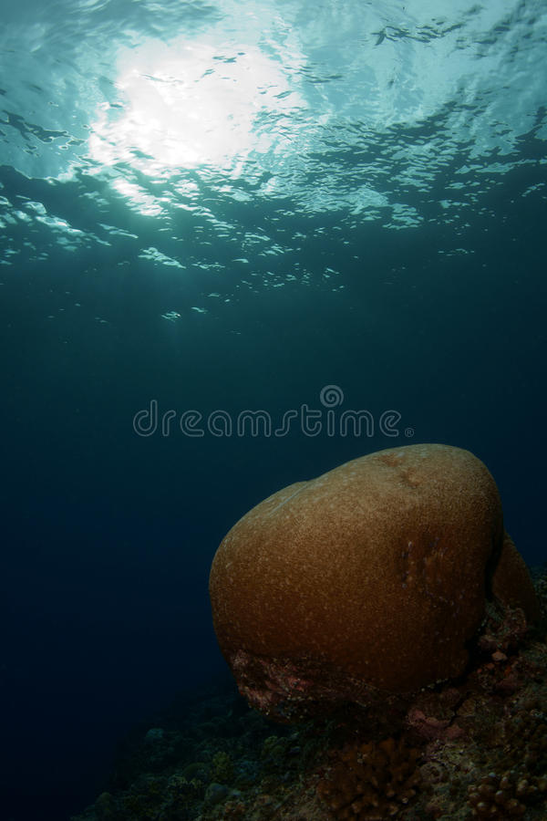 Seascapes... Stock Image