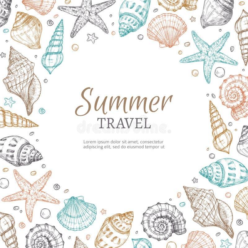 Seashell background. Vintage summer sea shells seastar banner etching style. Marine vector illustration. Banner with shellfish and seashell, starfish and royalty free illustration