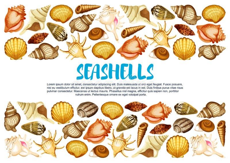 Seashell banner with marine mollusc shell border stock illustration