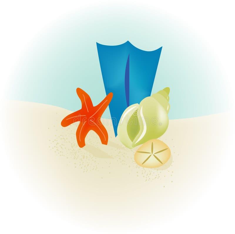Seashell Beach Stock Photography