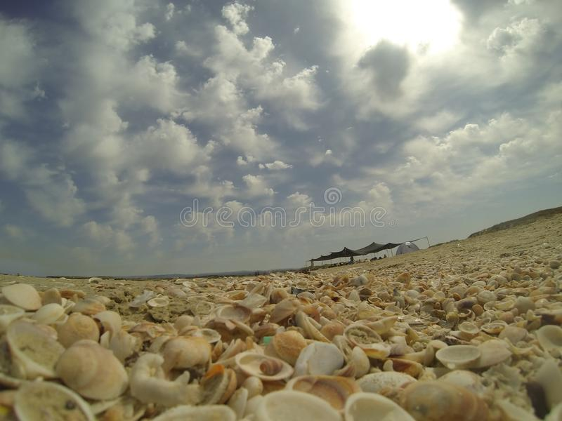 Seashell Beach in Israel stock images