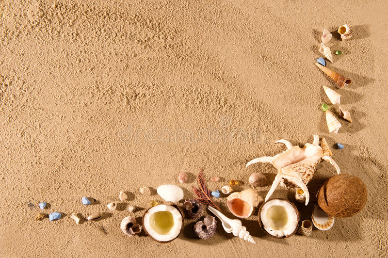 Seashell Border. stock photography