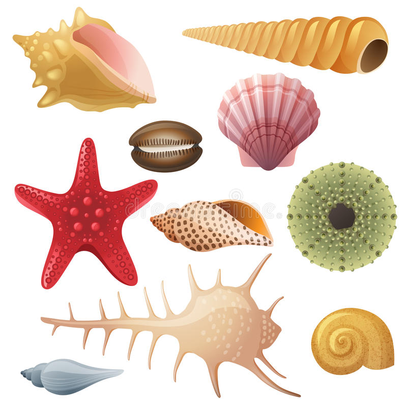 Free Seashell Icons Stock Image - 36067031