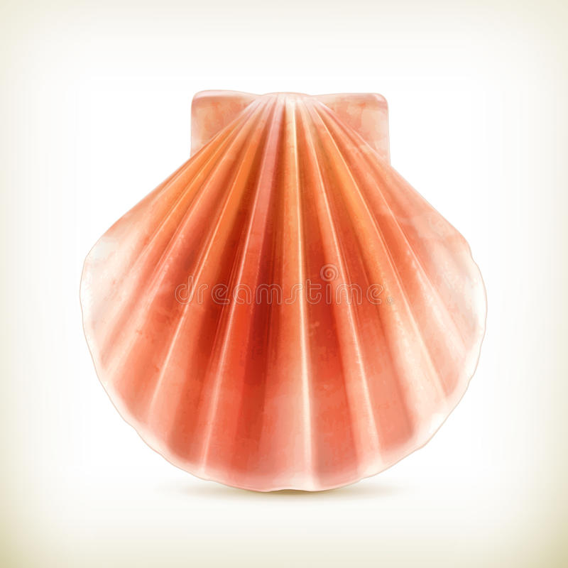 Seashell ikona ilustracji