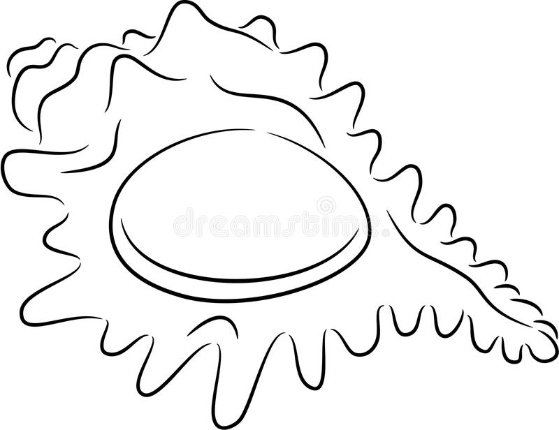 Seashell. Illustration of sea shell contour, isolated vector illustration