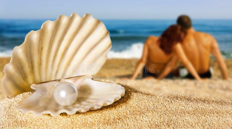 Seashell mit Perle auf dem Strand stockbild