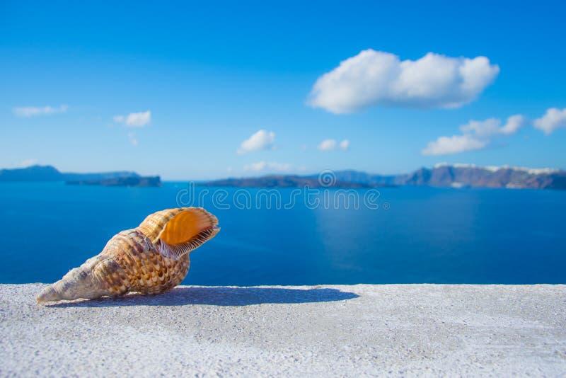 Seashell na wypuscie z oceanu tłem, Santorini fotografia royalty free