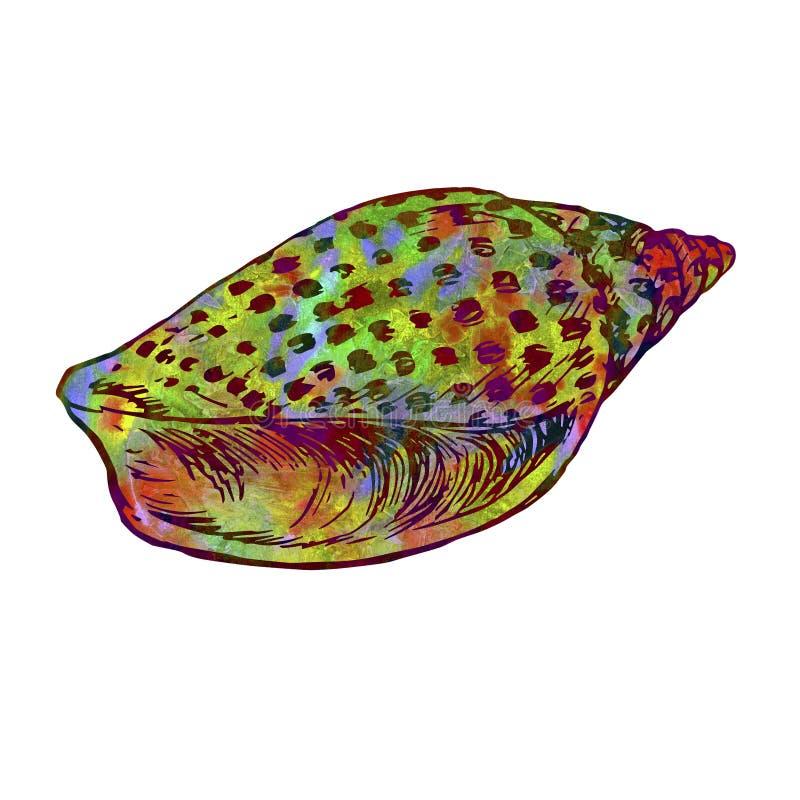 Seashell odizolowywająca ilustracja, ręka malujący kolorowy abstrakcjonistyczny akwarela kolor żółty, zieleń, czerwień ilustracja wektor