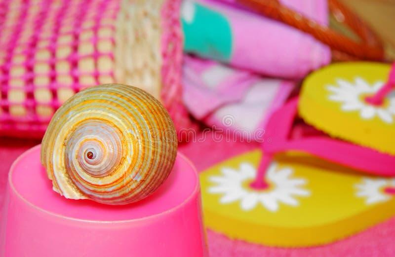 Seashell par Beach Accessories images libres de droits