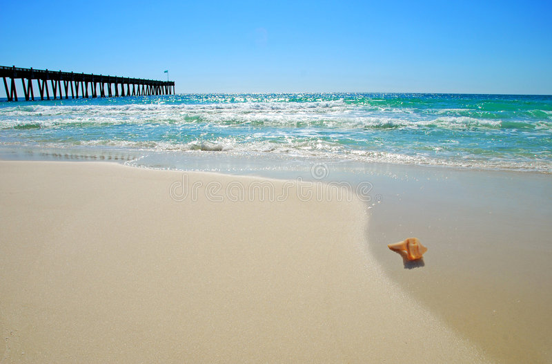 Download Seashell By Pier Stock Photography - Image: 2588192