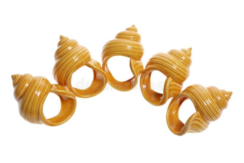 Seashell-Serviette-Halterungen stockfotografie