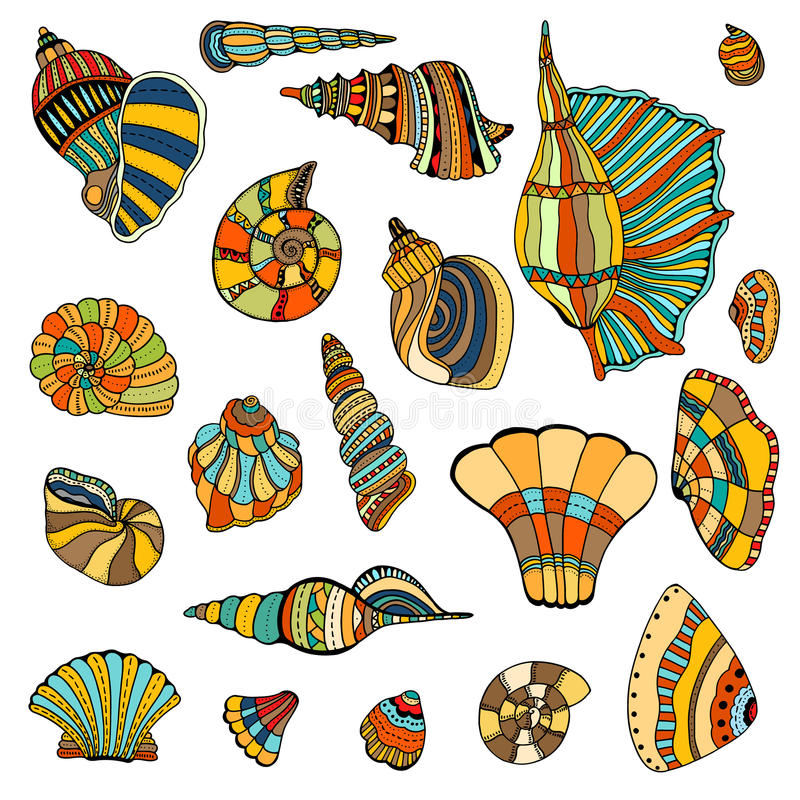 Seashell set collection vector illustration