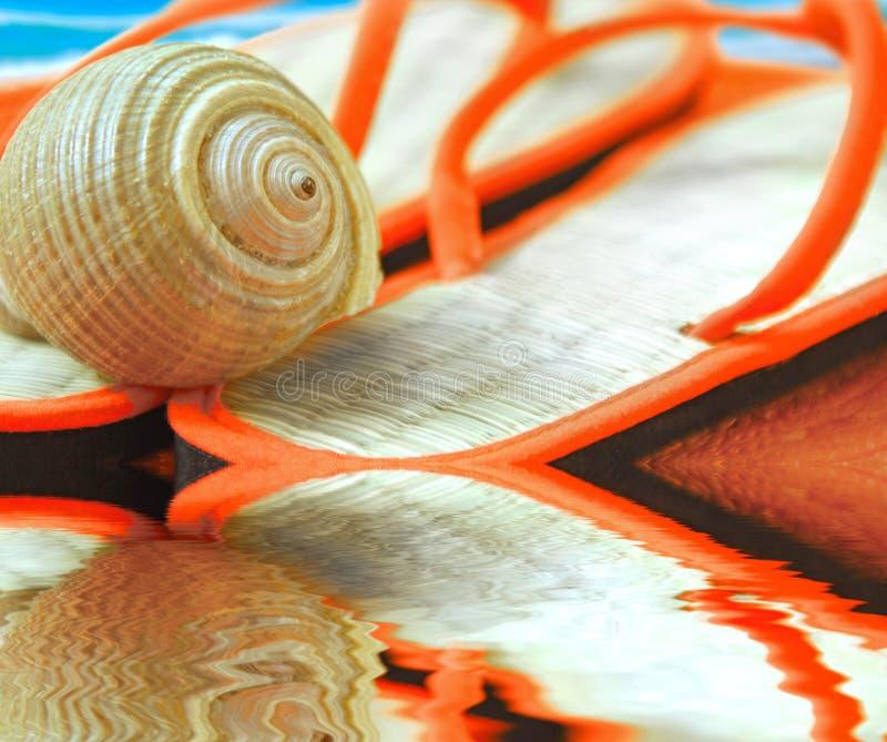 Seashell sur des santals à la plage image stock