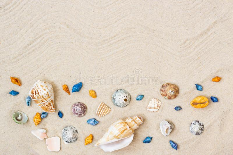 Seashells на песке Предпосылка летних каникулов моря с космосом для текста стоковая фотография rf