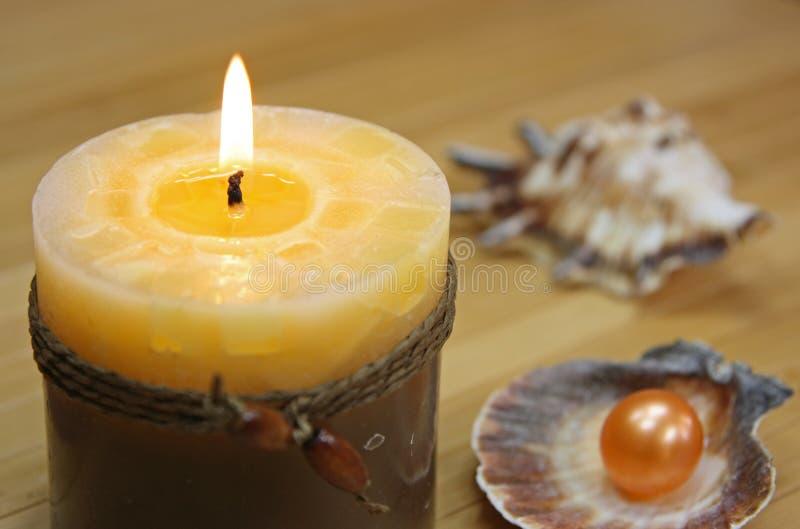 seashells свечки стоковое изображение rf