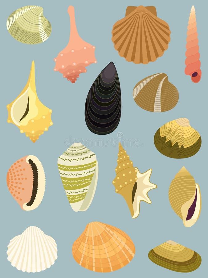 seashells ilustracja wektor