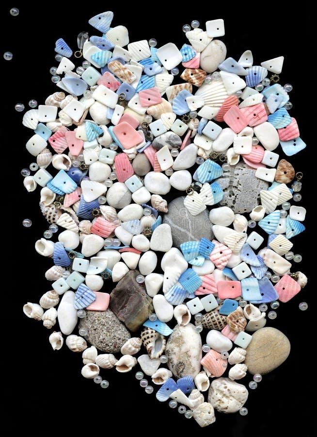 Seashells con los granos en fondo negro imágenes de archivo libres de regalías