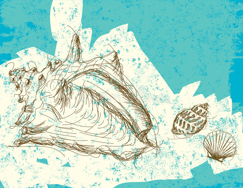Seashells stock illustration