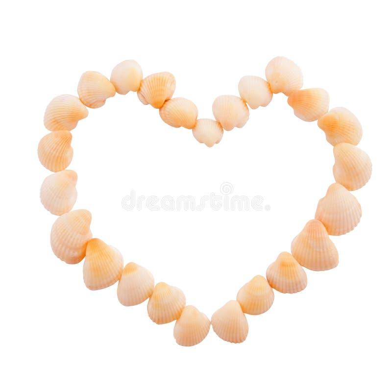 Download Seashells del corazón stock de ilustración. Ilustración de cubo - 7281008