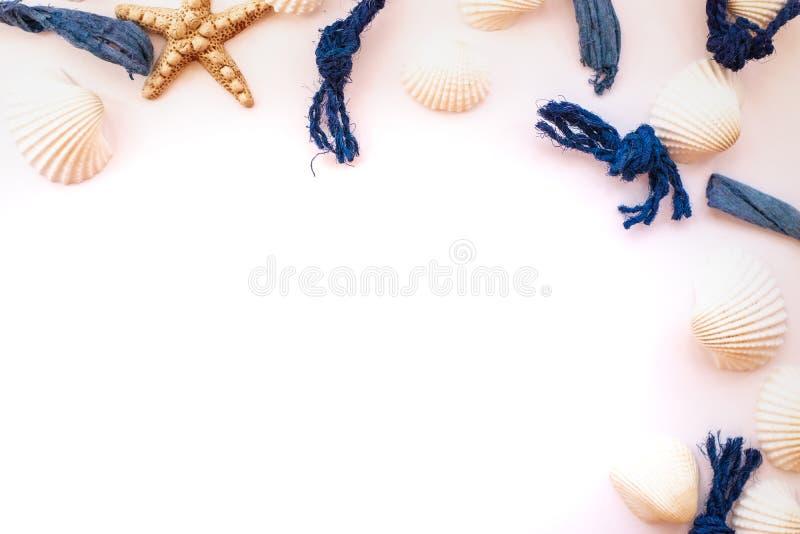 Seashells, denne arkany i rozgwiazda organizujący na różowym tle, na widok Tropikalny wakacje poj?cie Mieszkanie nieatutowy obrazy stock
