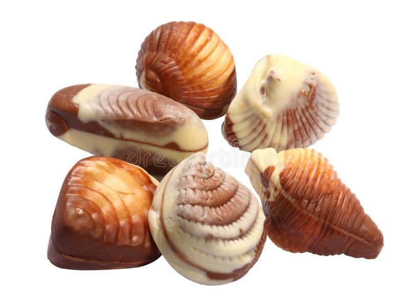 Seashells do chocolate imagem de stock royalty free