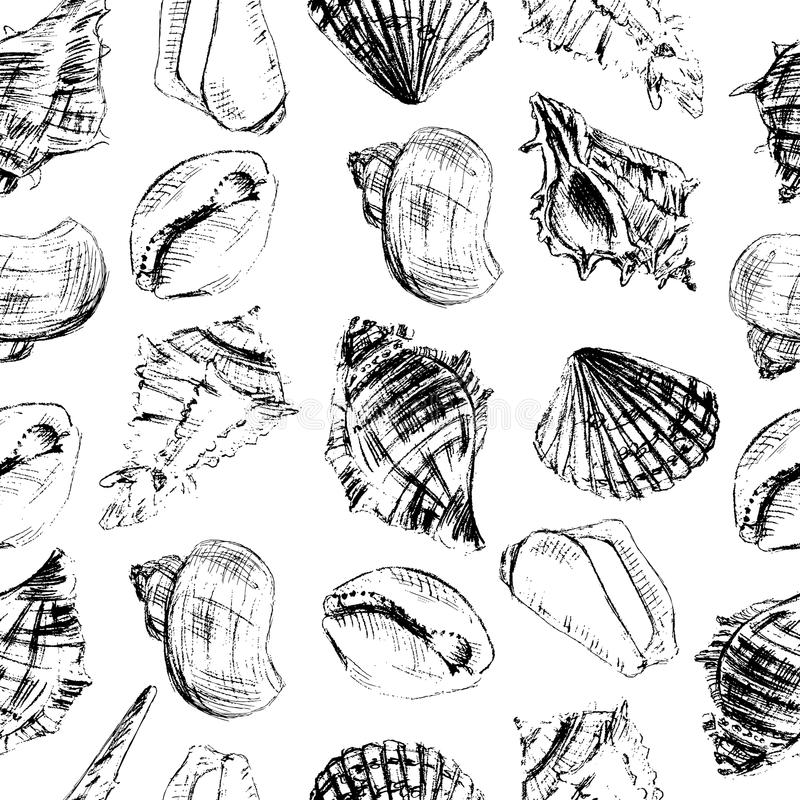 Seashells hand drawn vector graphic etching sketch isolated on white background, seamless pattern, underwater artistic. Marine ornament, design for card royalty free illustration