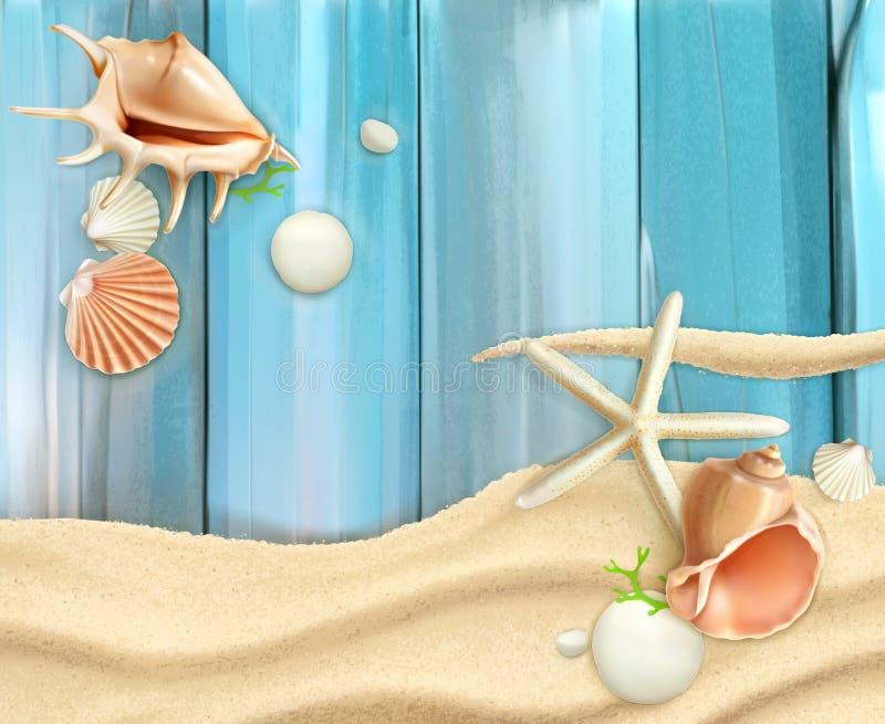 Seashells i drewniany tło ilustracji