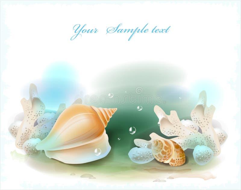 Seashells i korale ilustracja wektor