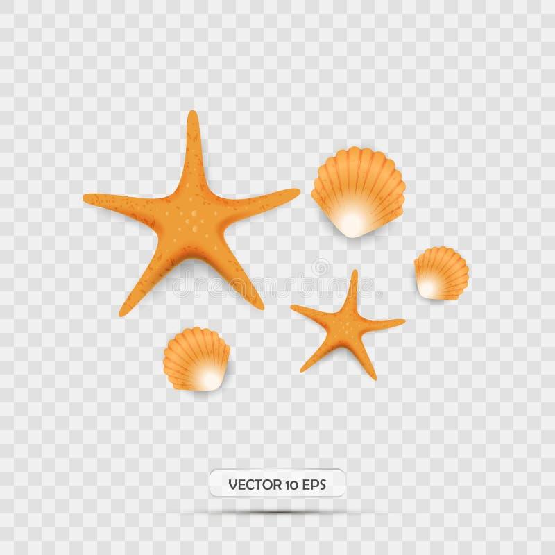 Seashells i rozgwiazda Realistyczne 3d wektoru ikony odosobniony royalty ilustracja