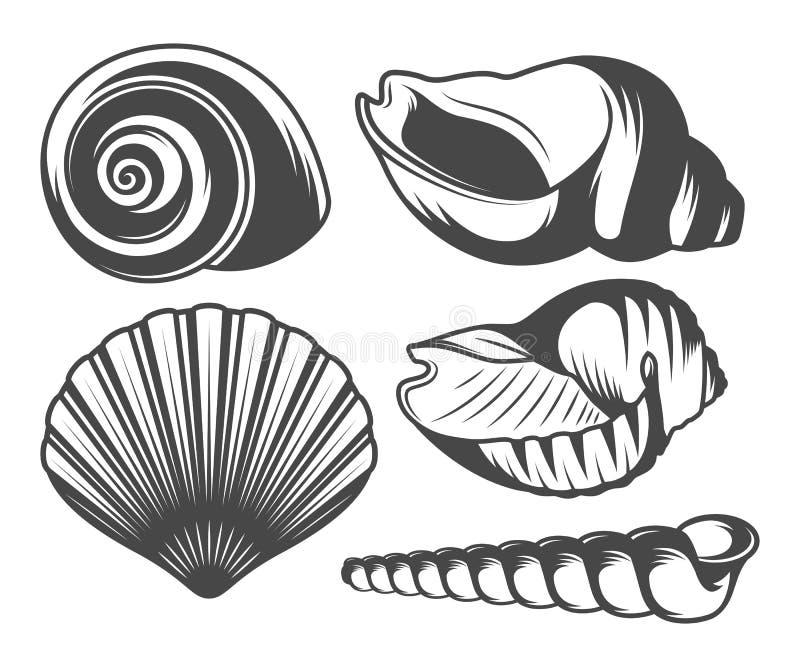Seashells ikony ustawiać ilustracji