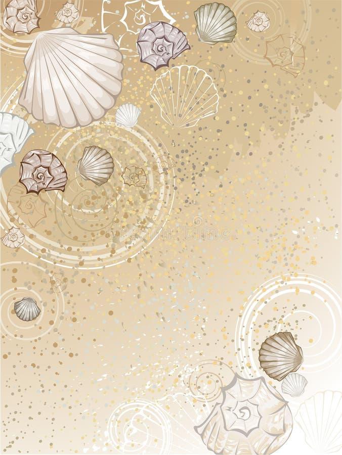 Seashells na areia ilustração do vetor