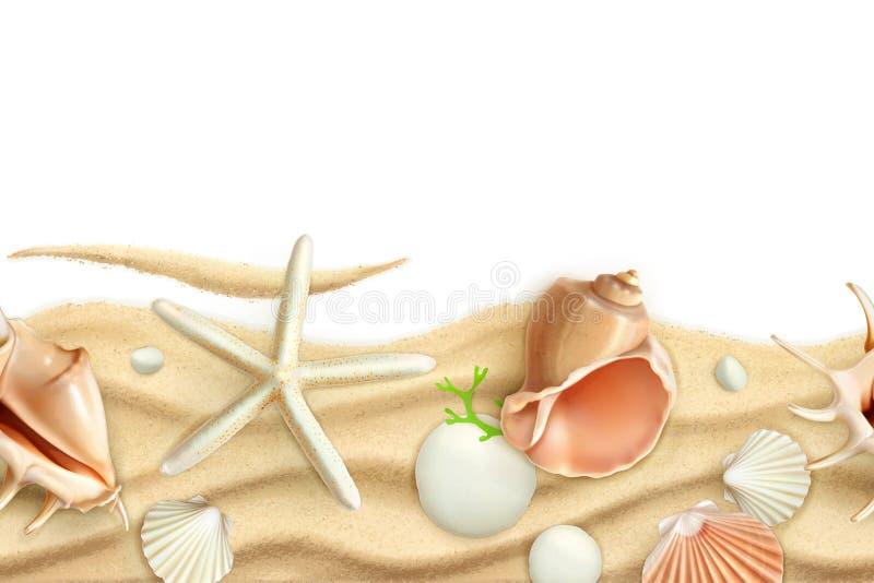 Seashells na piaska tle ilustracji