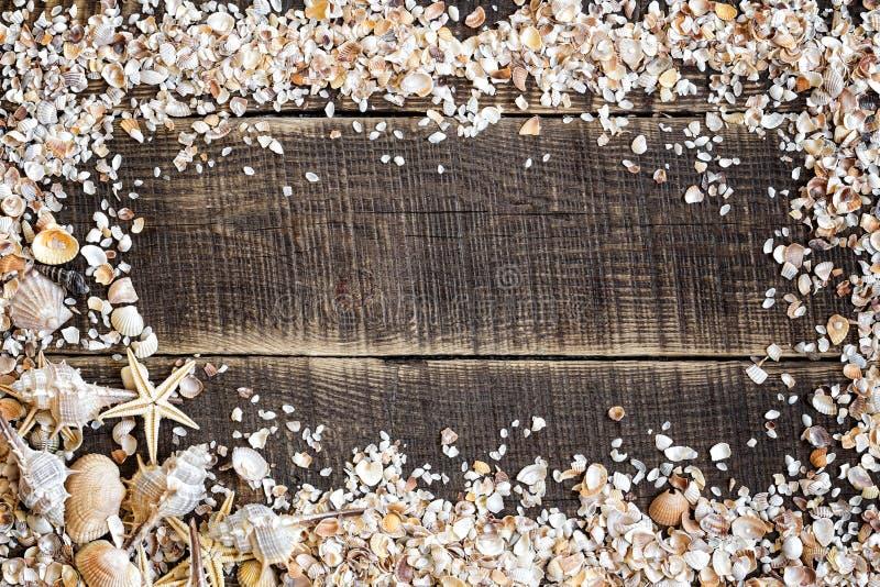 Seashells obramiają na drewnie zdjęcia stock