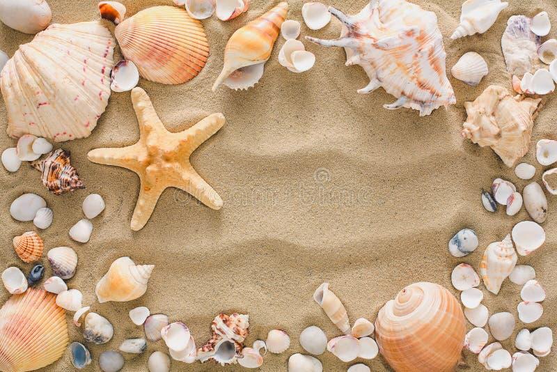 Seashells and pebbles background, natural seashore stones royalty free stock photo