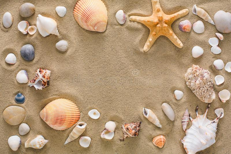 Seashells and pebbles background, natural seashore stones royalty free stock photography
