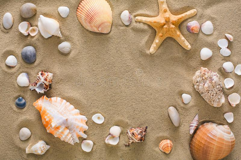 Seashells and pebbles background, natural seashore stones stock image