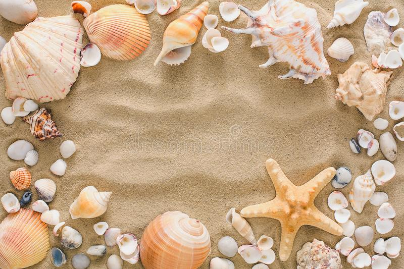 Seashells and pebbles background, natural seashore stones stock photo